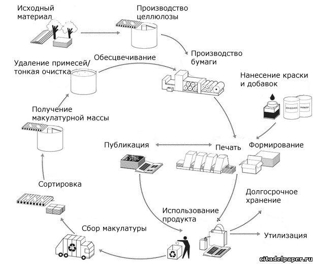 Переработка макулатуры в крафт бумагу сдача макулатура спб
